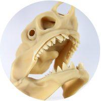玩具 ステップワイズ株式会社 3Dプリンター
